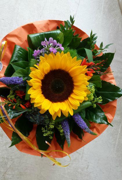 Sonnenblume-Blumenkaufen-Blumenfee-Hilden
